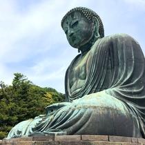*【高徳院】鎌倉大仏(車で3分・徒歩15分)