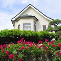 *【外観】庭には藤棚やバラの生垣などがあり、季節ごとの花々をご鑑賞いただけます。