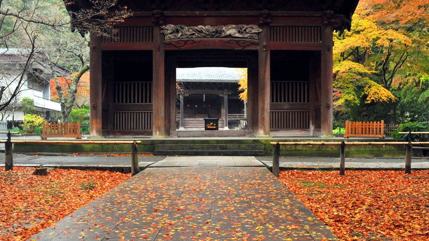 *【妙本寺】秋/紅葉の山門(車で10分・徒歩40分)※写真提供:鎌倉市観光協会
