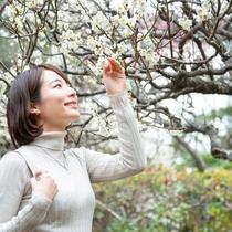 *【庭付き和室(14畳)】1階/お庭(春)