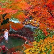 【露天風呂・川湯】秋の川湯は紅葉もキレイです