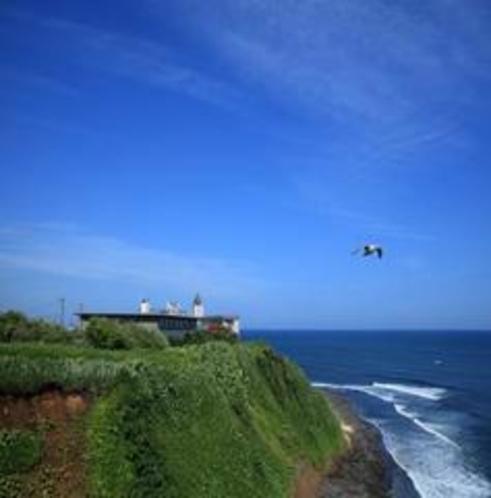 青く大きな空、どこまでも続く雄大な海
