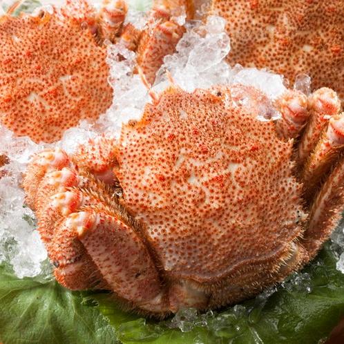 北海道を代表する食材『毛蟹』