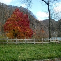 秋のくったり湖