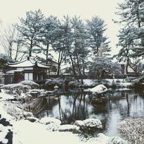 冬の庭園。寒いので暖かくして散策してくださいませ。