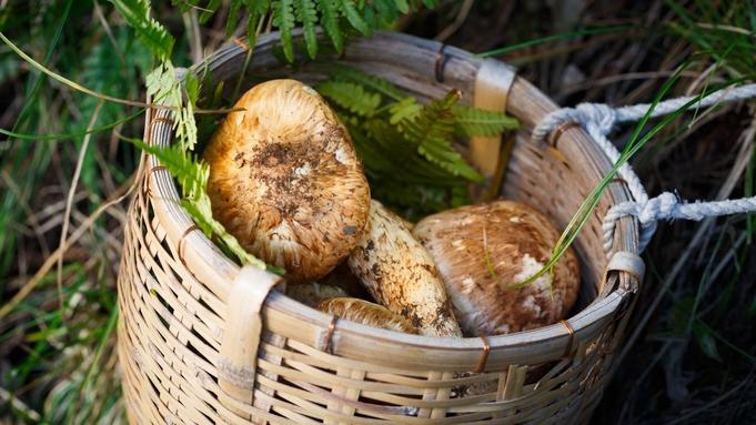 【本館 一棟貸し】◆秋の王様!松茸◆100%地物!美山で育った香り自慢の極上の松茸料理!!
