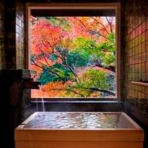 温泉半露天付き和洋室Aの温泉(紅葉)