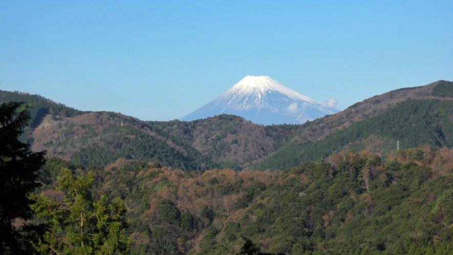 富士見平からの眺め