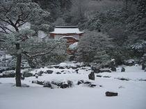 雪化粧の石庭