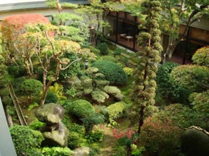 中庭のイメージ10