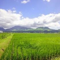 阿蘇五岳2012年8月撮影