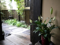 中庭風景(花植木鉢)