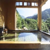 内湯大浴場(新緑)