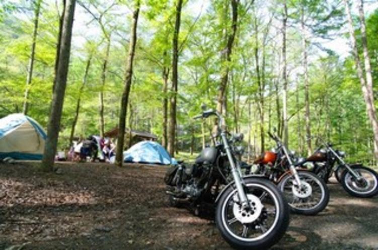 まほーばの森オートキャンプ場