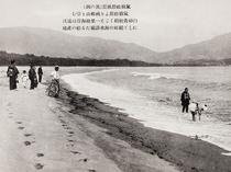 90年前の陸前高田松原