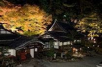 温泉寺 紅葉ライトアップ