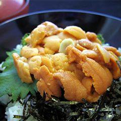 【昼食/お食事処】波音と共にゆっくり♪新鮮なウニ丼を楽しむ※お部屋利用なし※