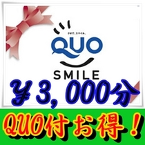 QUOカード3,000円付プラン