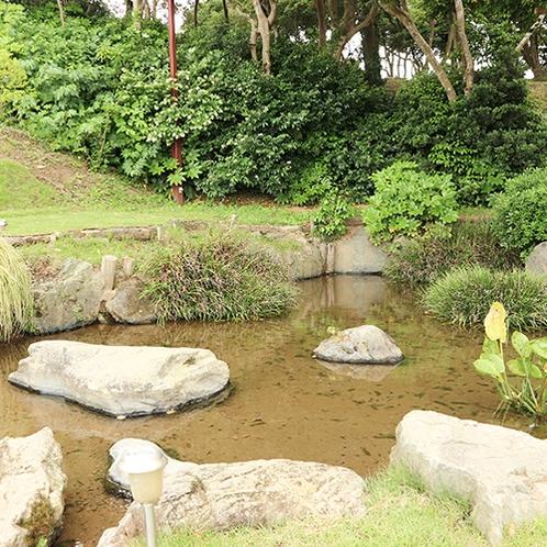 *[OCEAN VILLA TSURUYA]湧き水を引いて作った池と川があります。