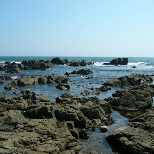 *[中生代白亜紀層]当館より車で約5分/三ッ塚地先海岸の景勝地。