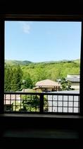 新緑の時期 客室からの眺め1