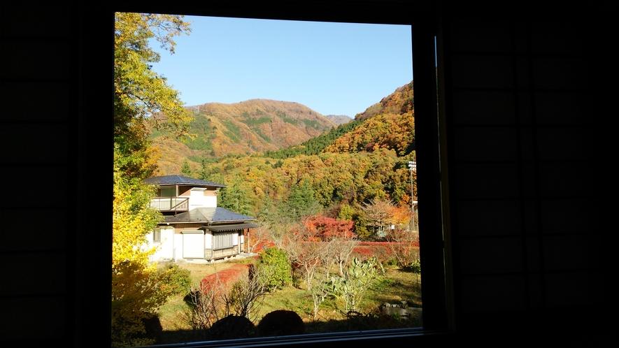 客室からの景色 秋一例
