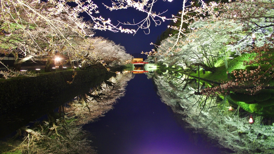 *【周辺観光スポット】桜の時期の人気スポット、上杉神社の夜桜ライトアップ☆