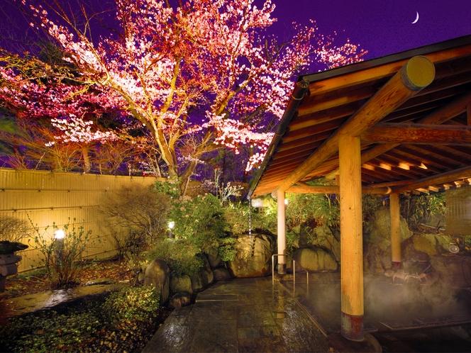 桜舞う夜桜風呂