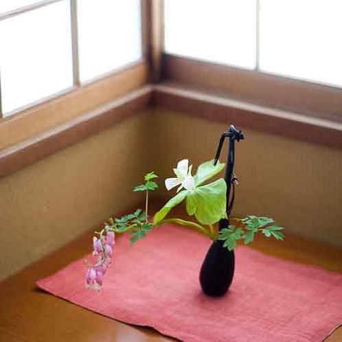 【さかえや館内風景】山野草を館内でお楽しみ頂けます。