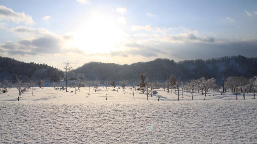 *雪解け間近の白川湖。幻想的な景色が広がります。