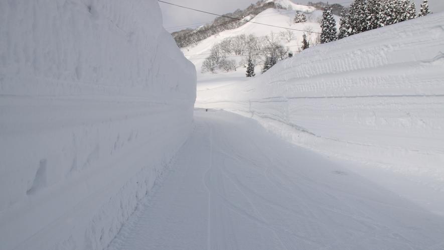 *冬の玄関はこんな感じ♪雪の壁を楽しみながらご来館下さい!