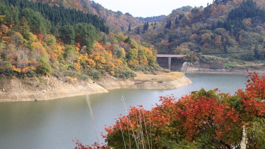 *秋の白川ダム湖畔