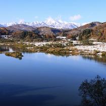 *[春/水没林]白川ダムの影響で季節によって水位を変える白川湖は4月下旬~5月中旬「水没林」となる