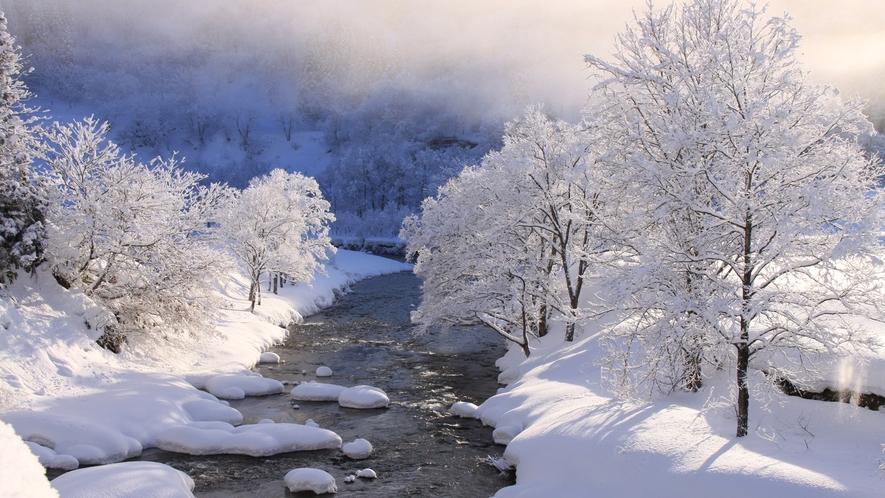 *県内でも有数の豪雪地帯だからこそ美しい雪景色をご覧頂けます。