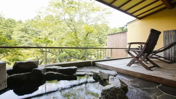 岩露天風呂+和室6畳+ツインベッド+庭テラス