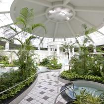 ジャングル温泉