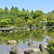 日本庭園初夏 風景