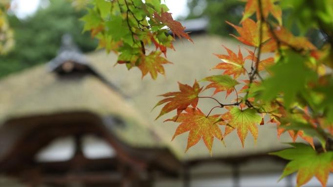 ◆特選◆【秋季限定 松茸尽くし会席】香り豊かな地元産松茸を心ゆくまで【個室食】又は【部屋食】