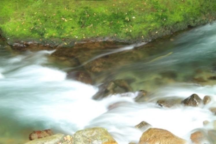 天城の冷水