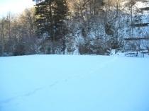 雪遊びできます! ☆テニスコート2面分の広さ☆