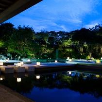 庭園の神秘的な夕景