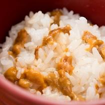 *【夕食/ウニ飯】ぷりぷりの新鮮なウニを、アツアツのご飯と一緒に!