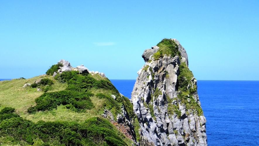 *【猿岩】当館から車で約35分。そっぽを向いた猿にそっくり!壱岐の人気スポット♪