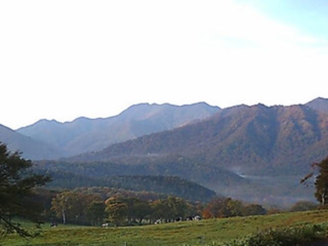 大自然の笹ヶ峰。車で40分。
