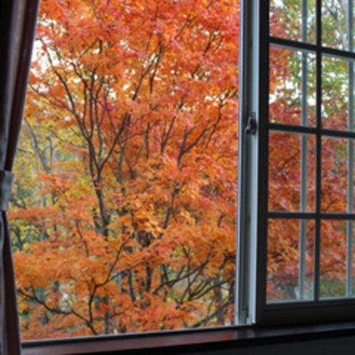 紅葉の時期の客室窓