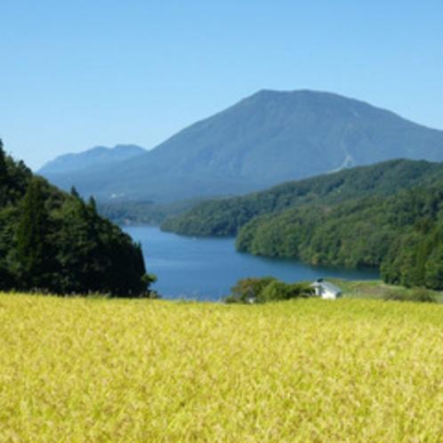秋の野尻湖と田園