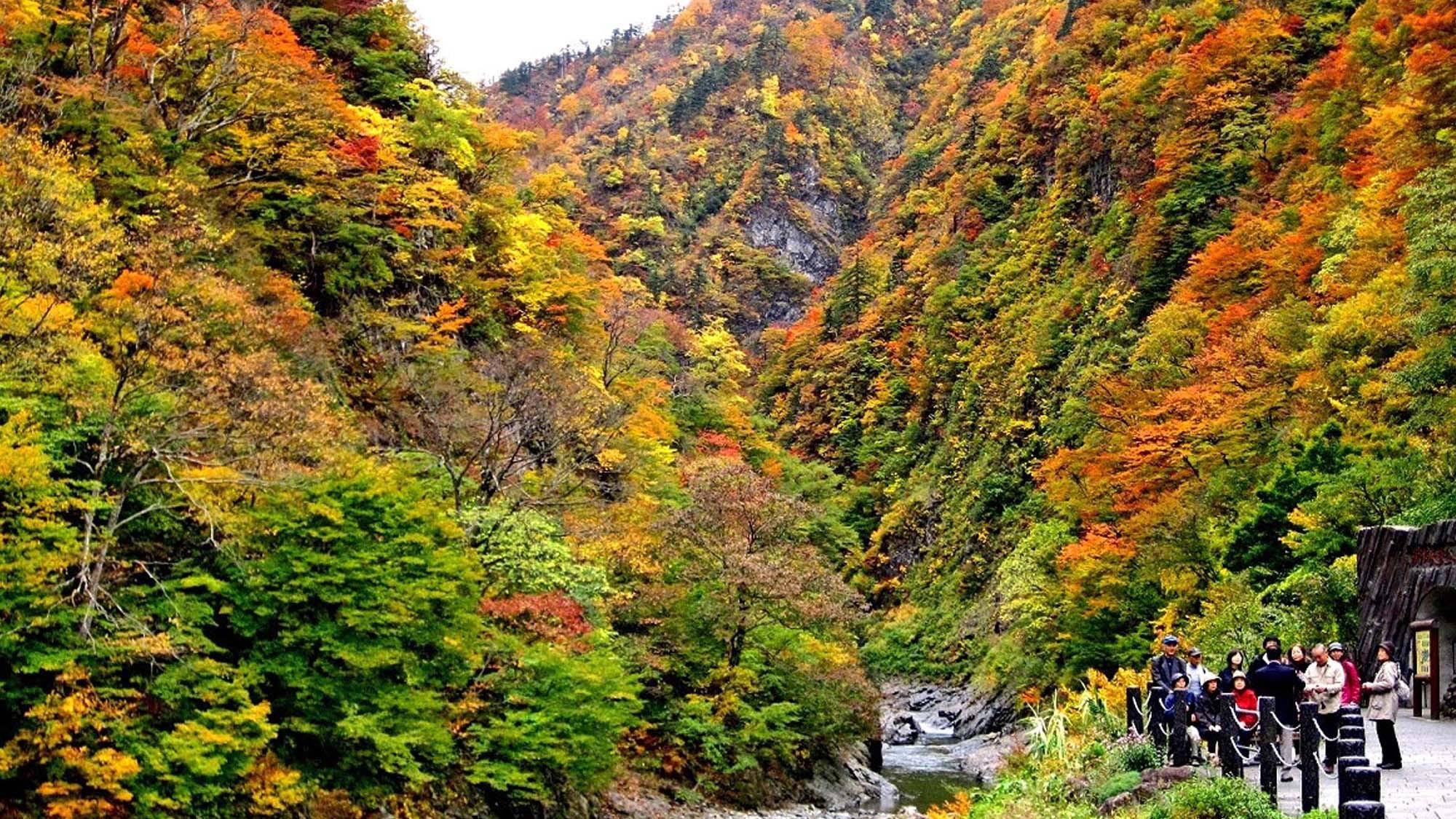 【清津峡・秋】壮大な三大渓谷清津峡、トンネル入口からの紅葉の景色は圧巻!