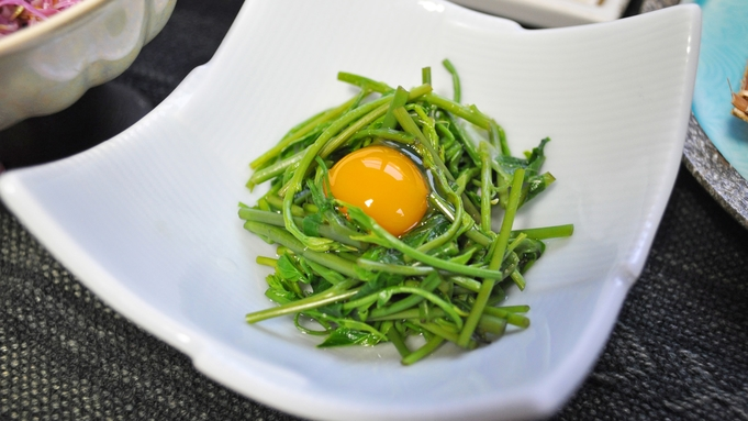 季節の山菜を美味しく味わう♪少量向けお手軽プラン(夕朝食付)