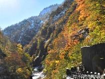 【清津峡・秋】紅葉と雪のコントラストはお天気次第の眺めです