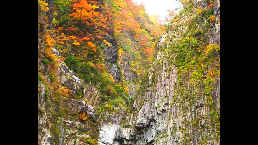 【清津峡・秋】壮大な三大渓谷清津峡、パノラマステーションからの眺め